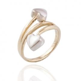 Золотое кольцо  (1261)