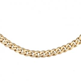 Золотая цепь  (481)
