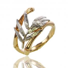 Золотое кольцо  (К0941)